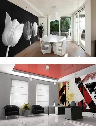Foto murali su carta da parati adesiva o tradizionale con colla per personalizzare la tua casa ed il tuo ufficio