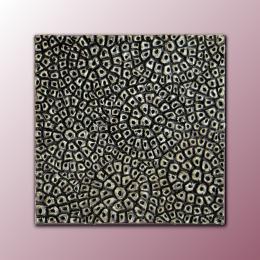 Bassorilievo decorativo argentato