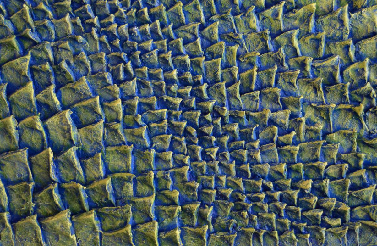 Lampade Da Tavolo 3d : Pannelli decorativi d giallo verde e blu livingdeco