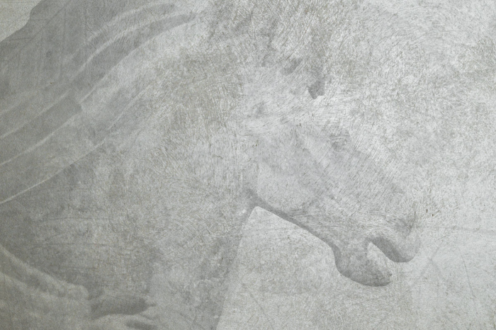 Cavalli di Terracotta - Grigio