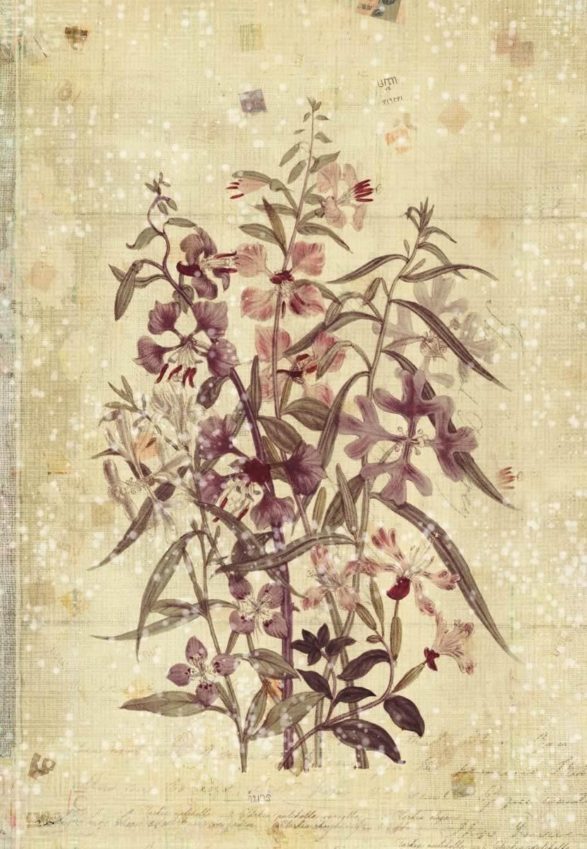 Stampa su tela di immagine con fiori livingdeco 39 for Immagini quadri fiori