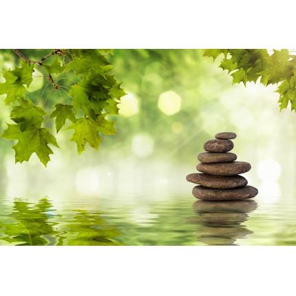 Fotomurali Zen -  Natura Zen