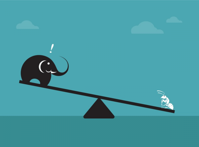 Elefante e formica
