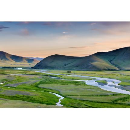 Steppa Mongola