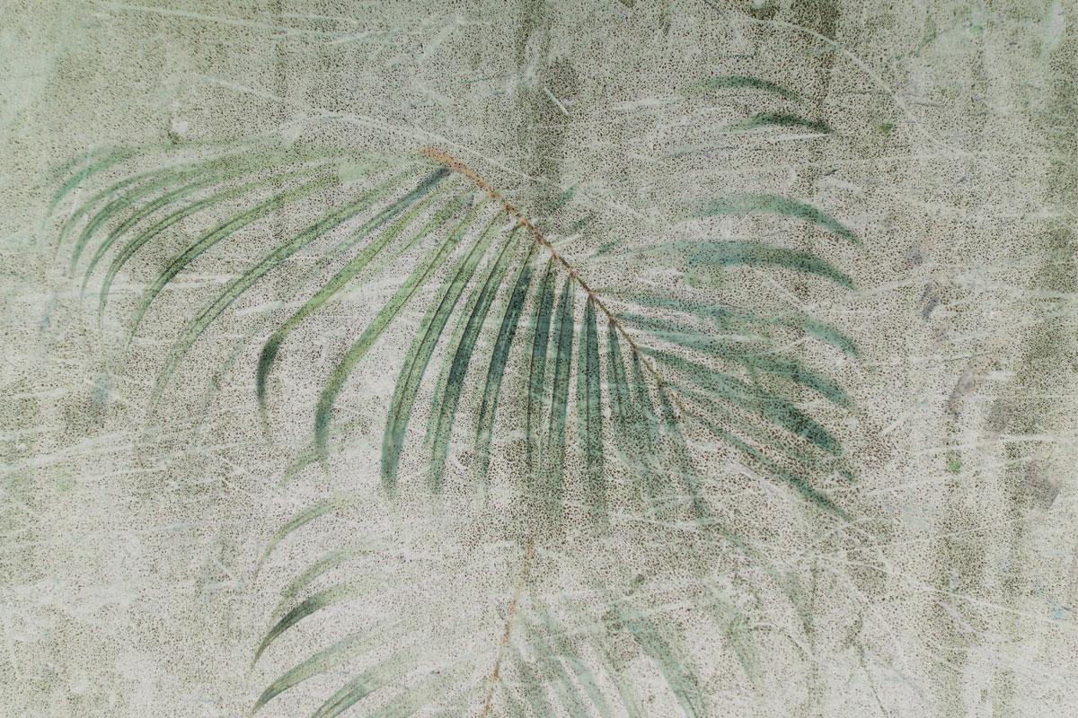 Carta Da Parati Texture carta da parati moderna raffigurante foglie di palma