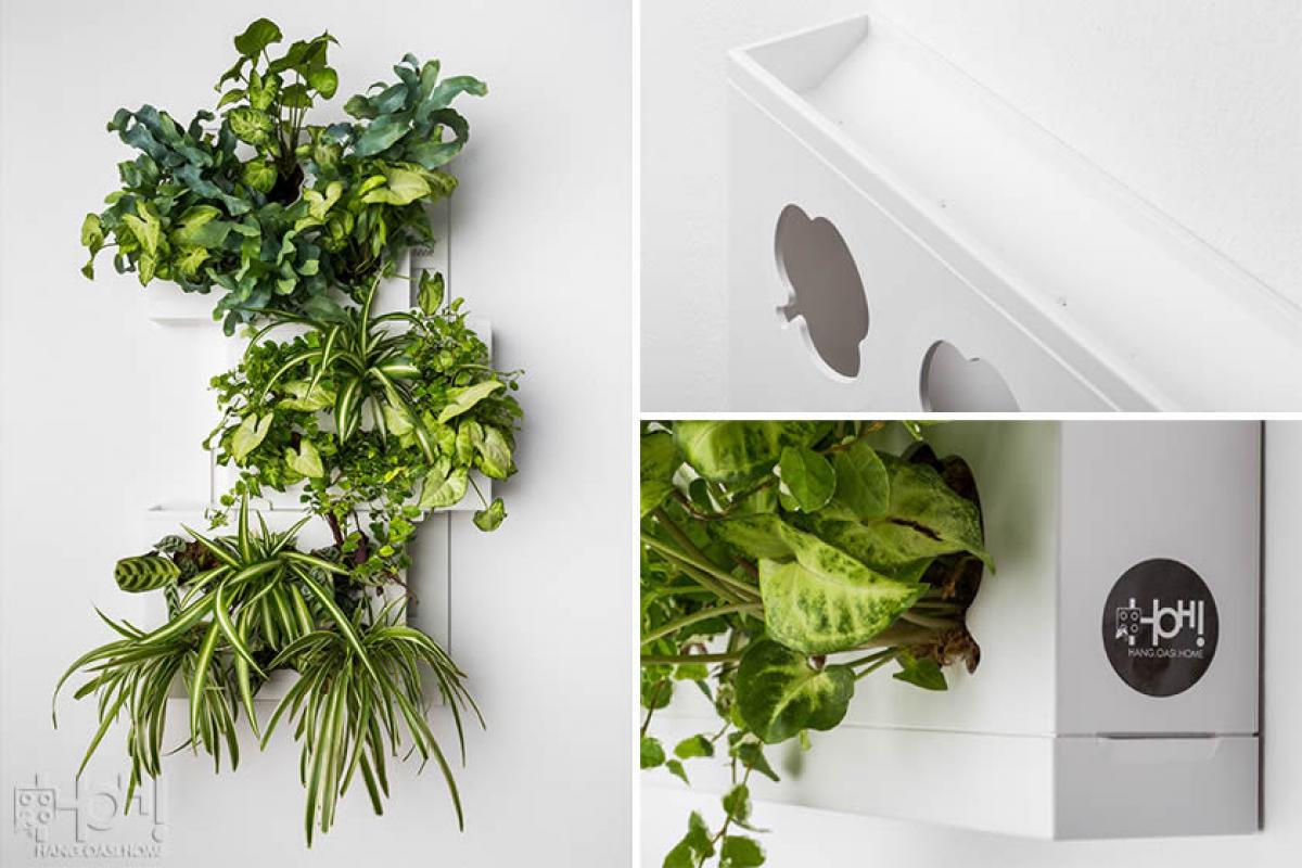Pannelli per giardini verticali hoh trio livingdeco 39 - Moduli per giardino verticale ...