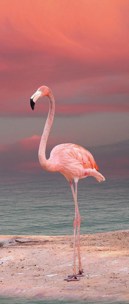 Adesivi per porte fenicottero rosa livingdeco 39 - Adesivi decorativi per porte ...