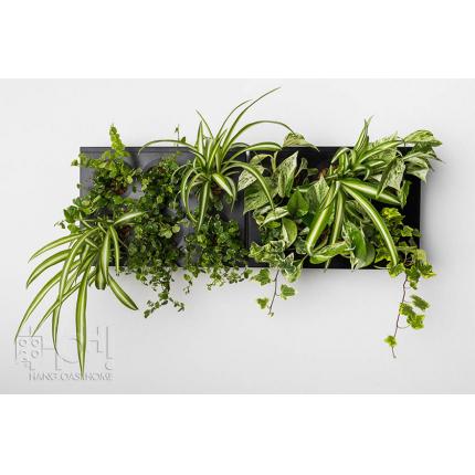 Giardini verticali - DuoSMART pannelli per giardino verticale HOH!
