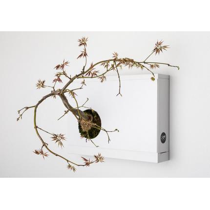 Giardini verticali - Pannello per bonsai  B-HOH!-nsai Artkami