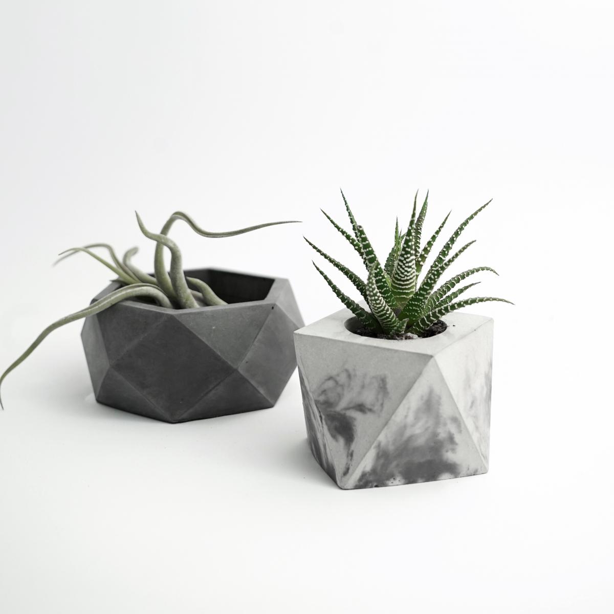 Vasi moderni da interno 28 images vasi moderni da for Vasi da interno moderni
