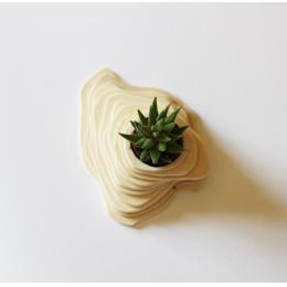 Vasi decorativi - Vaso in legno XS