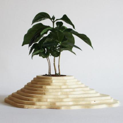 Vaso in legno piccolo