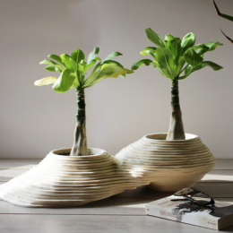 Vaso in legno grande doppio