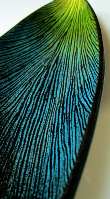 Piccolo vassoio ovale nero