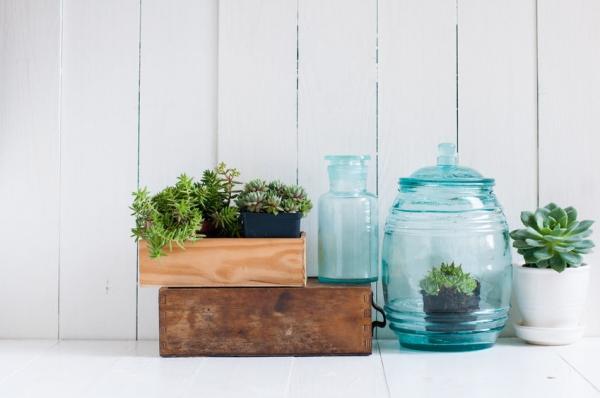 Livingdeco 39 5 idee per arredare con le piante for Arredare casa con le piante