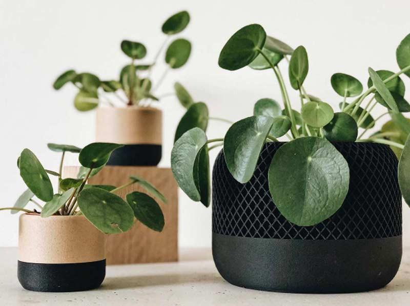 Essere consumatori sostenibili