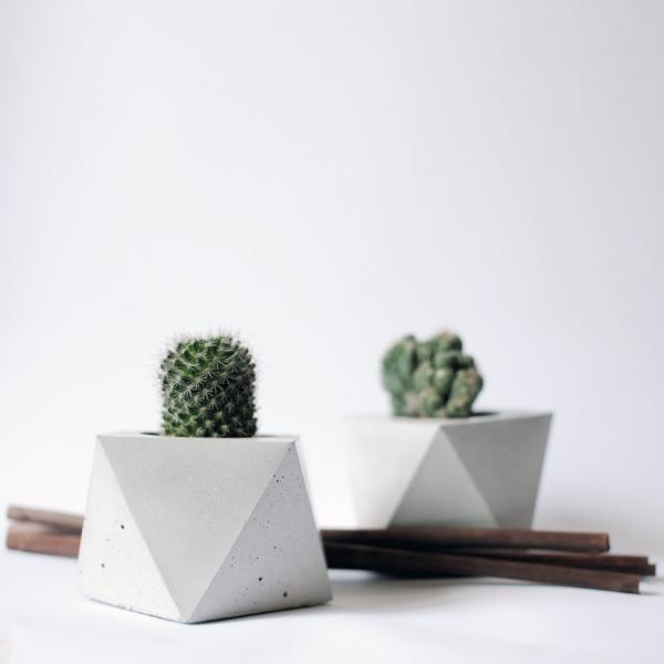 Arredare con le piante | Vasi in cemento